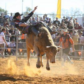 2012 Bull Ride
