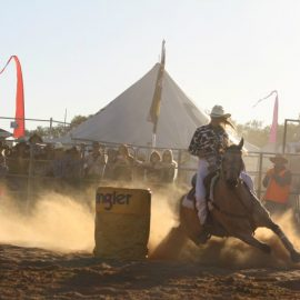 2012 Ladies Barrel Race