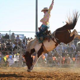 2012 Saddle Bronc 2